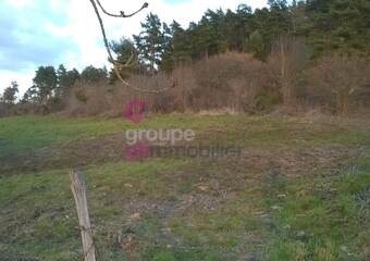 Vente Terrain 1 610m² Retournac (43130) - Photo 1