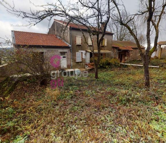 Vente Maison 300m² Saint-Privat-d'Allier (43580) - photo