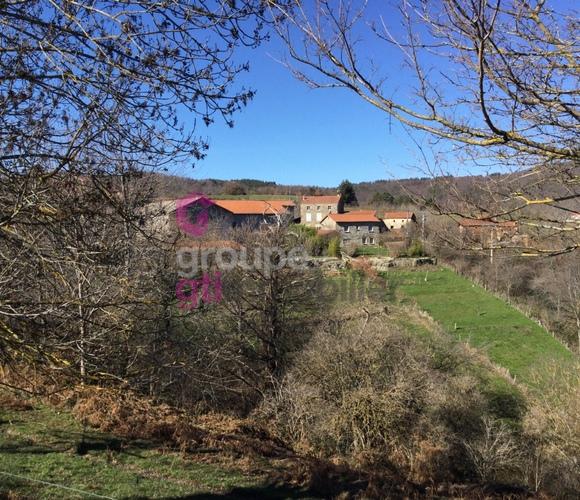 Vente Maison 11 pièces 240m² Langeac (43300) - photo