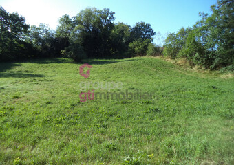 Vente Terrain 1 273m² Sanssac-l'Église (43320) - Photo 1