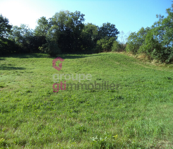 Vente Terrain 1 273m² Sanssac-l'Église (43320) - photo