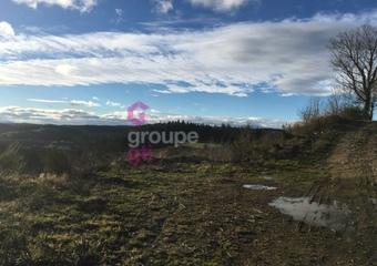 Vente Terrain 2 214m² Riotord (43220) - Photo 1