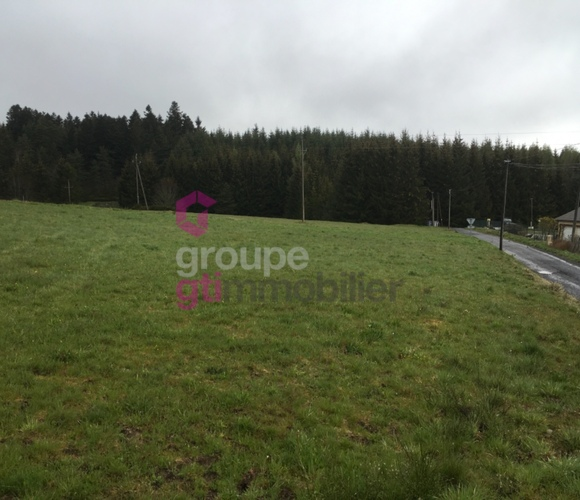 Vente Terrain 1 666m² Mazet-Saint-Voy (43520) - photo