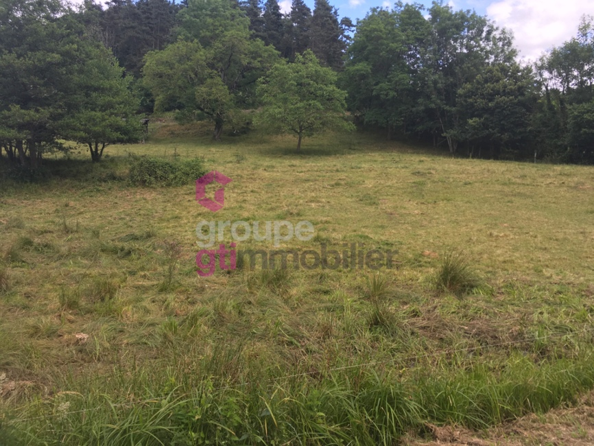 Vente Terrain 2 565m² Ambert (63600) - photo