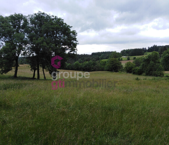 Vente Terrain 2 452m² Grazac (43200) - photo