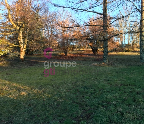 Vente Terrain 930m² Saint-Romain-Lachalm (43620) - photo