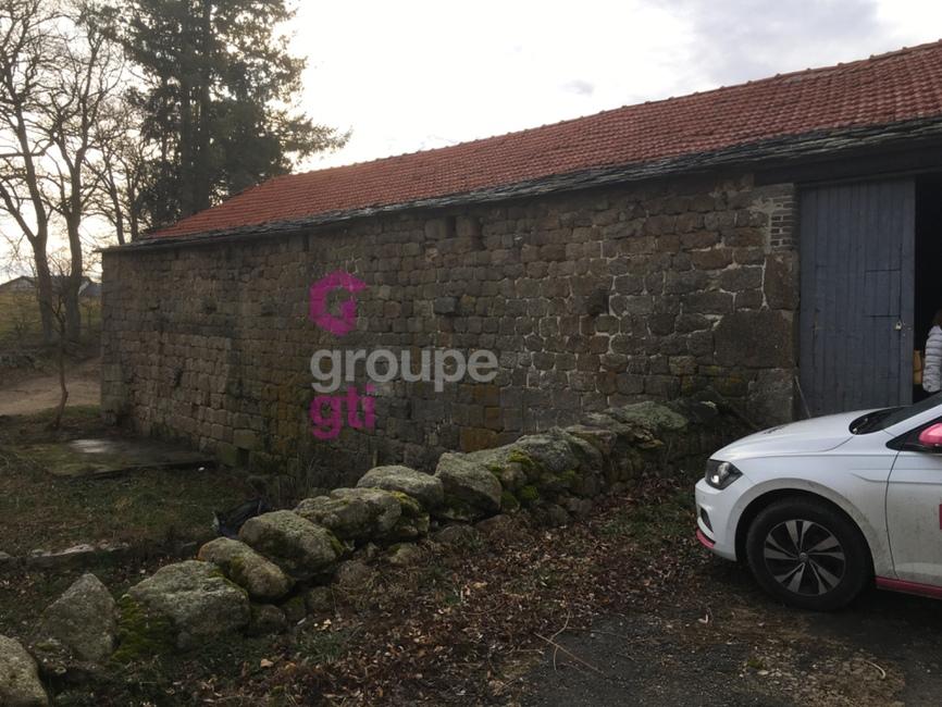Vente Maison 400m² Tence (43190) - photo