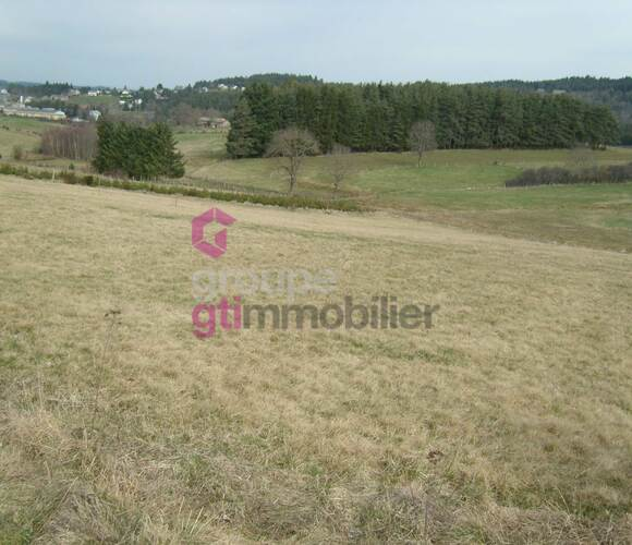 Vente Terrain 1 044m² Tence (43190) - photo