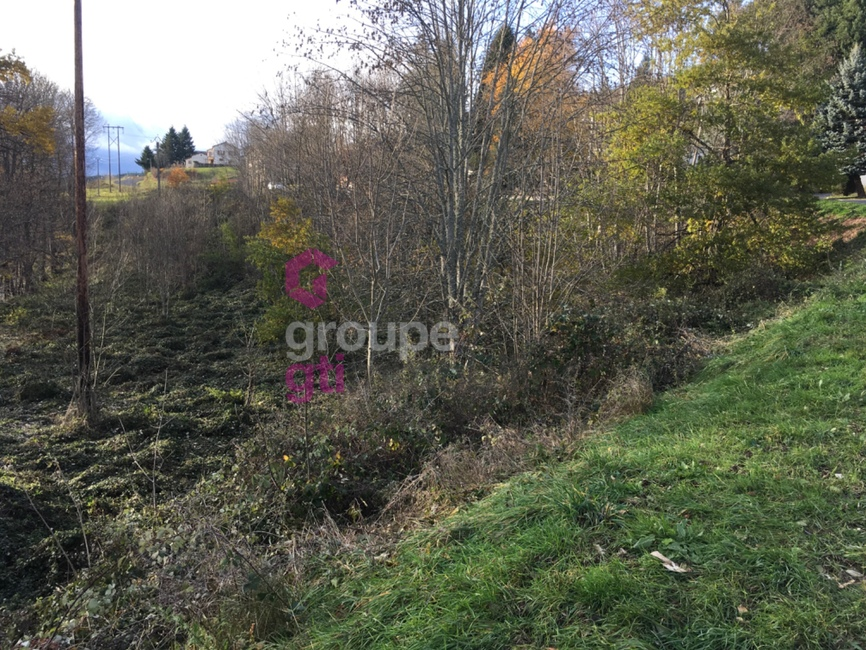 Vente Terrain 2 533m² DUNIERES - photo