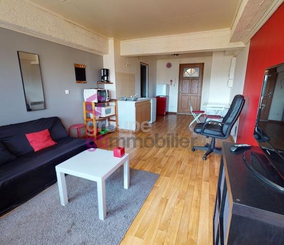 Vente Appartement 1 pièce 30m² Saint-Étienne (42100) - photo