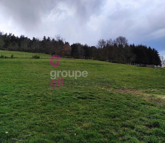 Vente Terrain 2 141m² Yssingeaux (43200) - photo