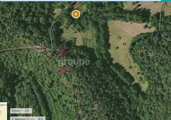 Vente Terrain 25 230m² Saint-Pal-de-Mons (43620) - Photo 1
