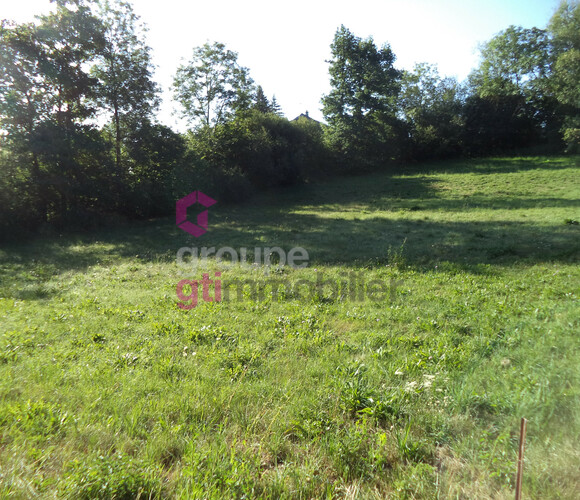 Vente Terrain 1 399m² Sanssac-l'Église (43320) - photo